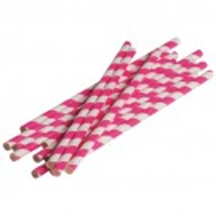 Hot Pink Stripped Paper Straws (Dozen)
